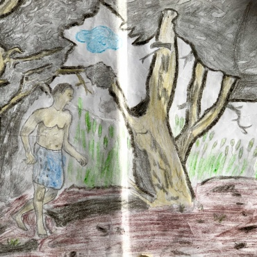 THE TEARS OF A TREE